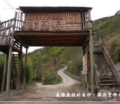【新竹 景點】鎮西堡神木步道 | 泰雅的原始面紗