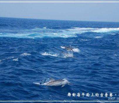 【宜蘭 景點】舞動海平面上的吉普賽。龜山島 (海上搭船、賞鯨、賞豚)