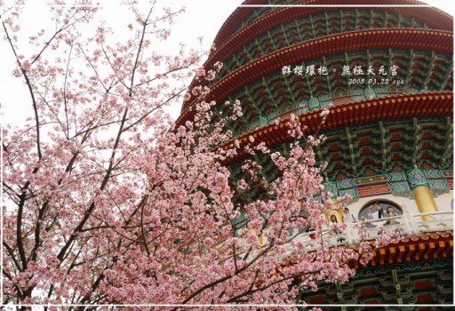 [台北 景點] 群櫻環抱。無極天元宮
