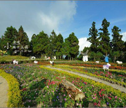 【南投清境 景點】小瑞士花園 | 花海、音樂噴泉與壯觀的清境風車節