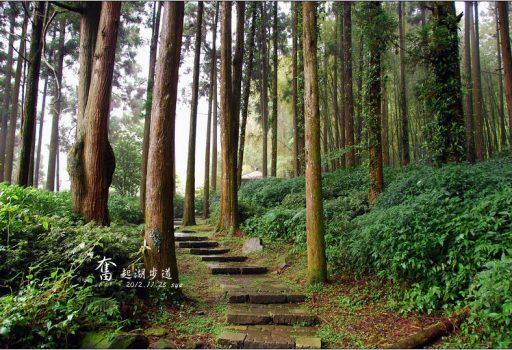 [嘉義 景點 森林步道] 奮起湖步道、觀景台、神社