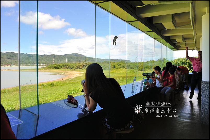 龍鑾潭自然中心   國家級濕地、適合親子同行的候鳥賞鳥景點