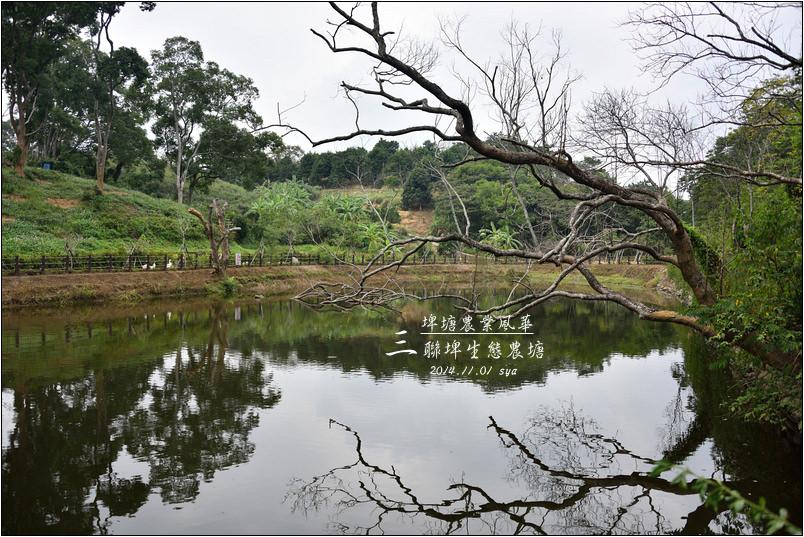 北埔三連埤 | 埤塘農業風華