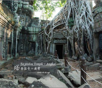 【吳哥】 塔普倫寺 Ta prohm Temple | 古墓奇兵中被大樹吞噬的古廟場景
