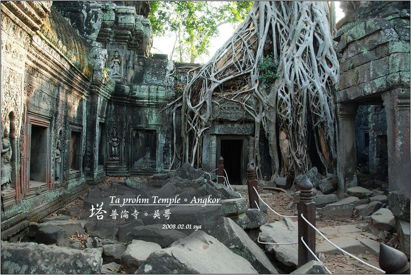 塔普倫寺 Ta prohm Temple | 古墓奇兵中被大樹吞噬的古廟場景