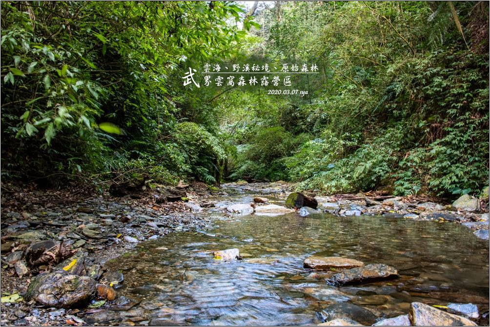 雲窩森林露營區 | 野溪秘境、星空、日出、雲海、原始森林步道