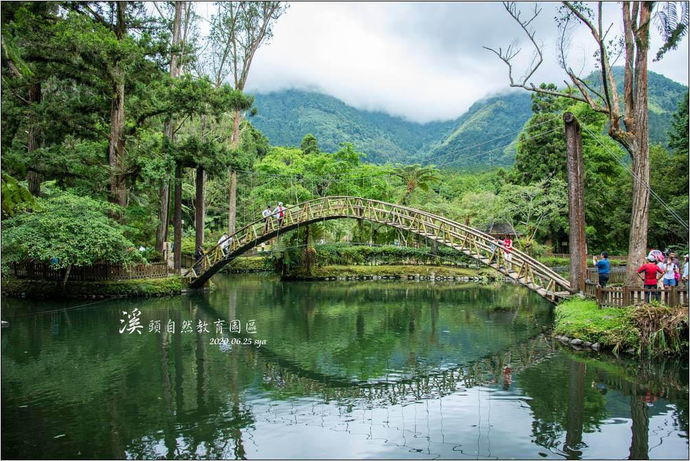 溪頭自然教育園區 (溪頭森林遊樂區) | 大學池、森林城堡、高空走廊、銀杏橋,值得長住享受森林浴的避暑聖地