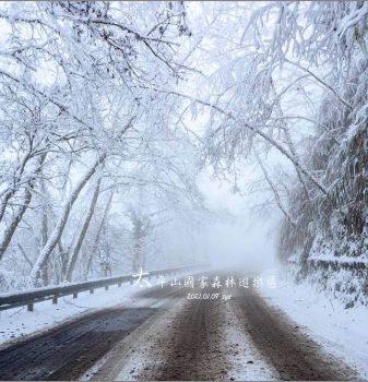 太平山國家森林遊樂區裡的冰雪奇緣 | 原來賞雪也是有些訣竅的!