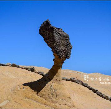【萬里 景點】野柳地質公園 | 到野柳一訪課本中的女王頭、仙女鞋、千年化石