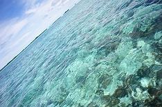 藍色 帛琉