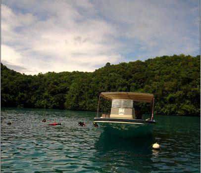 帛琉外海景點1 (日軍沈船區、天然牛奶SPA、玫瑰珊瑚、硬珊瑚、軟珊瑚、美人魚水道)