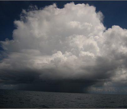 外島景點。帛琉 (長灘島、水母湖、海豚研究中心、鯊魚島、鯨魚島、情人橋、德軍水道)