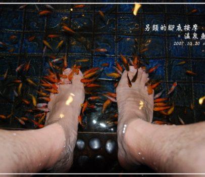 【宜蘭】另類的腳底按摩。溫泉魚SPA